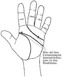 Handlinien2