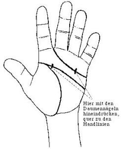 Handlinien3